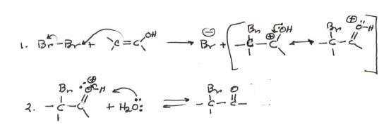 Bromine Reaction Reaction of Bromine With
