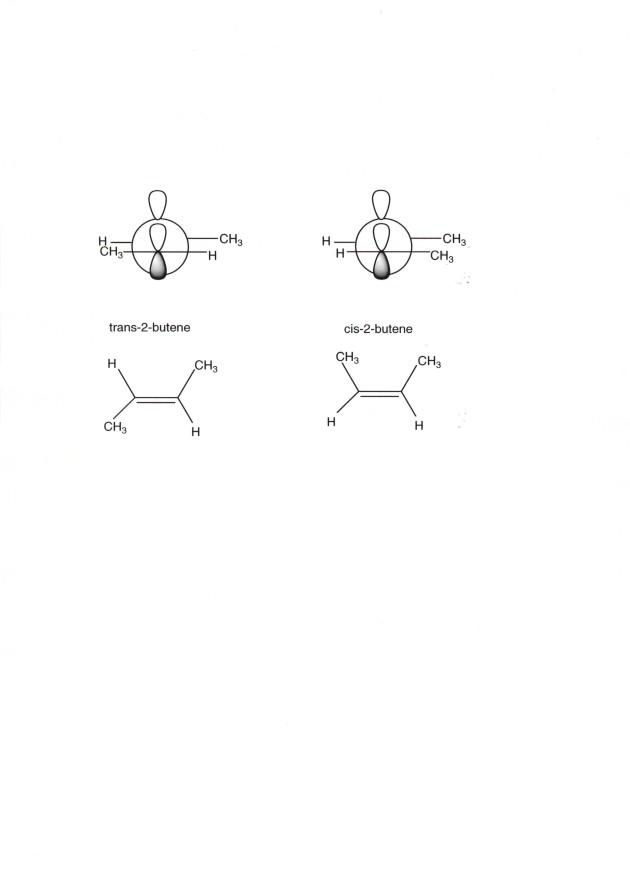 What is alkene stability?
