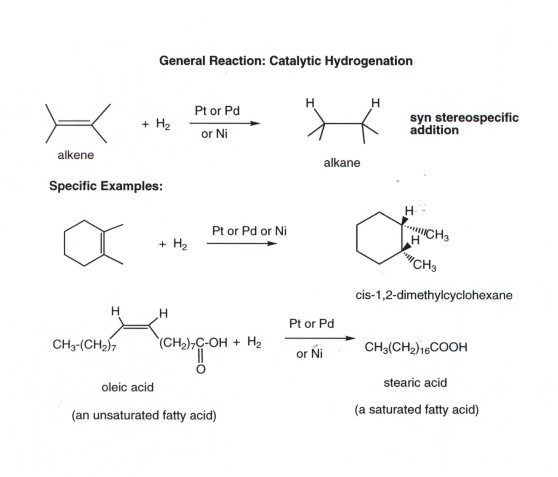 a lab experiment on the process of catalytic hydrogenation of an alkene Print science vegetable oils, emulsions and hydrogenation page:  these can  be detected using bromine water (just as alkenes can be detected) bromine  water  a nickel catalyst is used to speed up the reaction the double bonds are .
